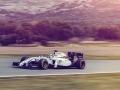 Maritni-Williams-FW36-F1-Fansite-2